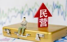 """在中央""""六稳、六保""""背景之下,民营企业如何化解财税危机?"""